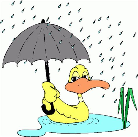 Descriptive essay on after the rain